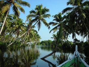 Delights of Kerala