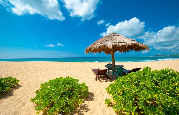 Srilankan Paradise