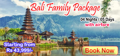 Bali Family Package ( 4 Nights )
